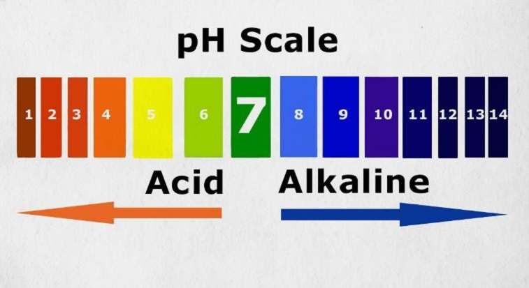 THE BENEFITS OF A BALANCED pH