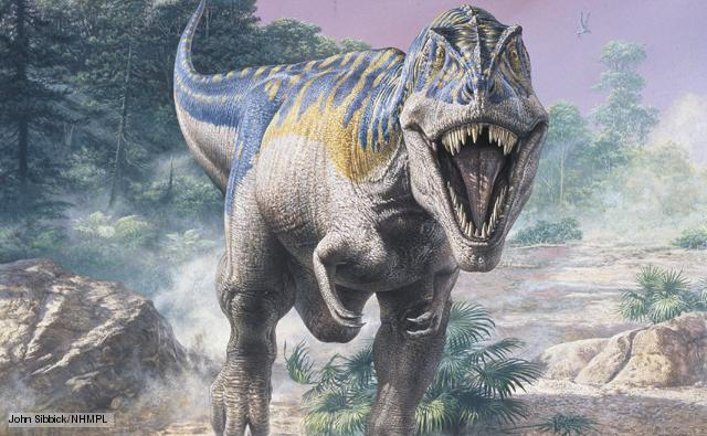 Kretase - Tersiyer Kitlesel Yok Oluşu'nda Telef Olmuş: Tyranno Rex!
