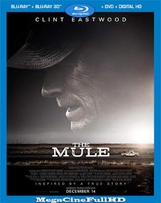 La Mula (2018)