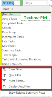 filters in ms project