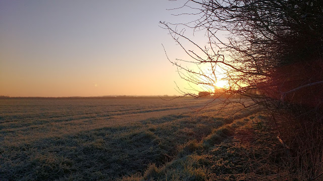 Cold frosty winter mornings in Norfolk countryside