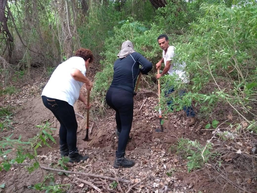 Rastreadoras hallan cinco osamentas en fosas clandestinas en Sinaloa.