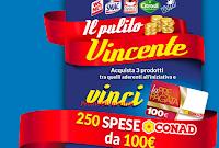 Logo Eroi di Casa ''Il pulito vincente'' vinci 250 card Conad da 100€