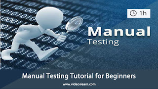 Manual Testing Tutorial for Beginners | Different Types of Testing | Black Box & White Box Testing