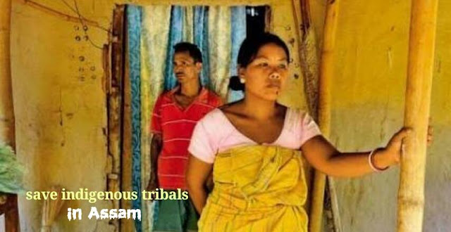 assam tribal rights, assam tribal identity crisis