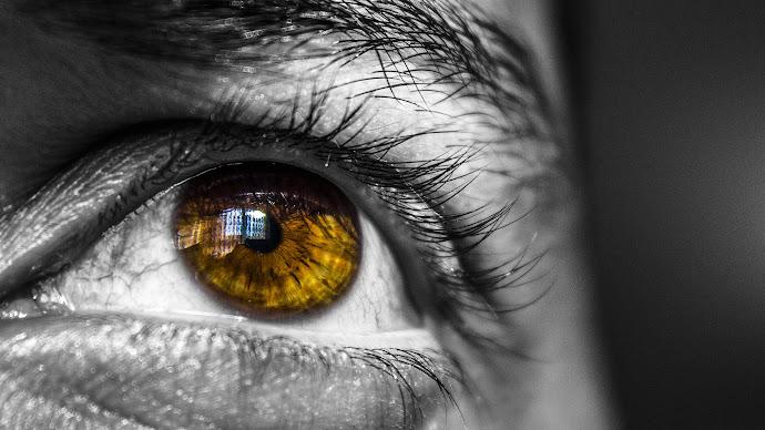 Wallpaper: Brown Eye