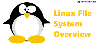 Linux File System Overview