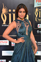 Shriya Saran in Beautiful Transparent Dark Gown IIFA Utsavam Awards 2017 055.JPG