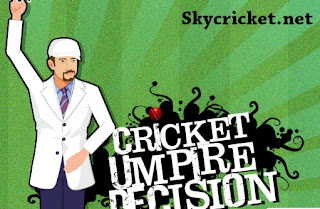 Play Cricket umpire decision game