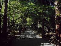 ryoan-ji kyoto