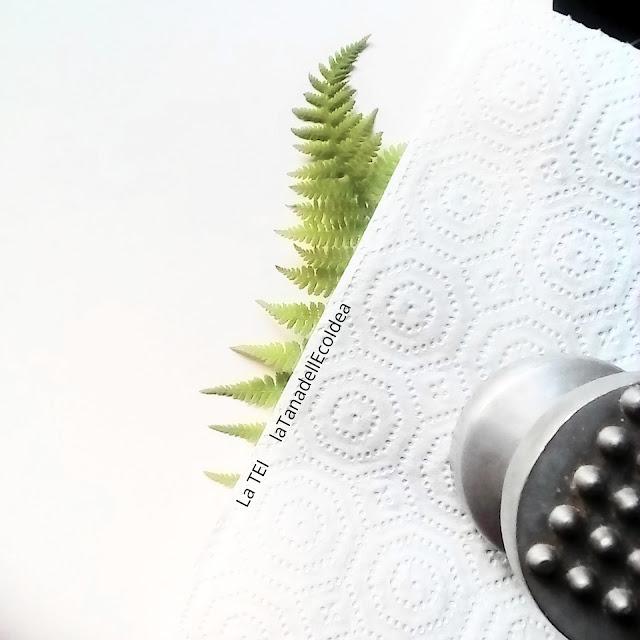 Come fare la stampa su foglio con le foglie