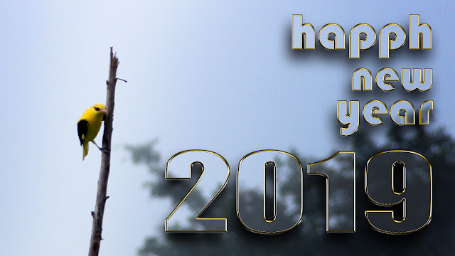 happy new year 2019 3d hd images