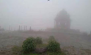 Wilson hill dharampur