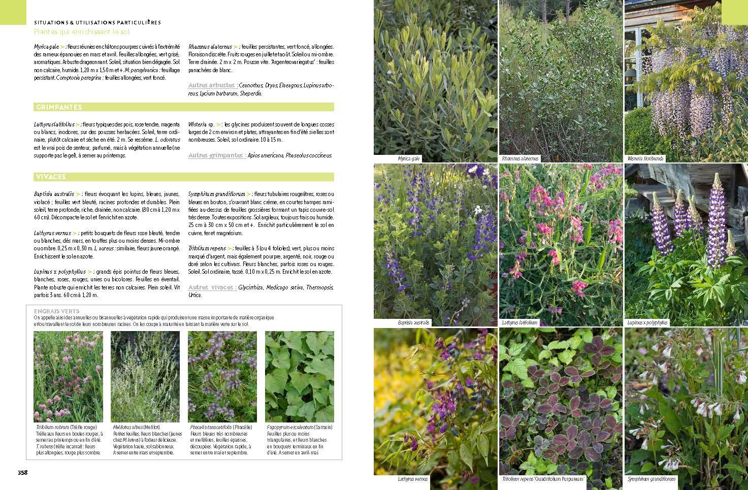 Toutes les plantes mon nouveau livre for Toutes les plantes