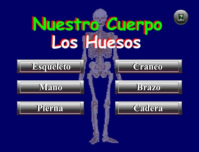 http://www.ceiploreto.es/sugerencias/juntadeandalucia/Nuestro_cuerpo_huesos/index.html
