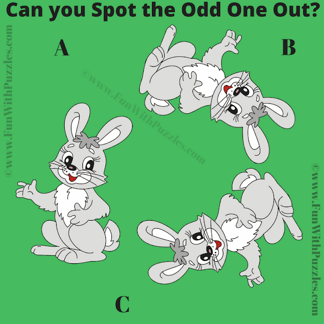 This is the Picture Riddle Brain Teaser in which one has to find the Odd One Out Picture