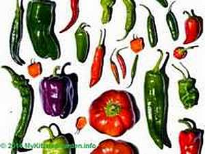 Peppers Shapes and Colours