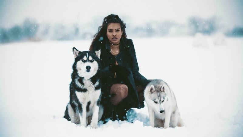 Snow Duchess HD