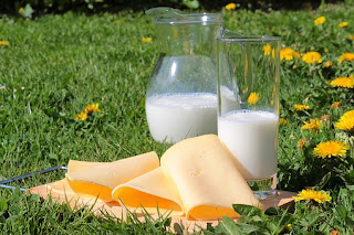 Importance of Calcium and Vitamin D You Need to Know Now