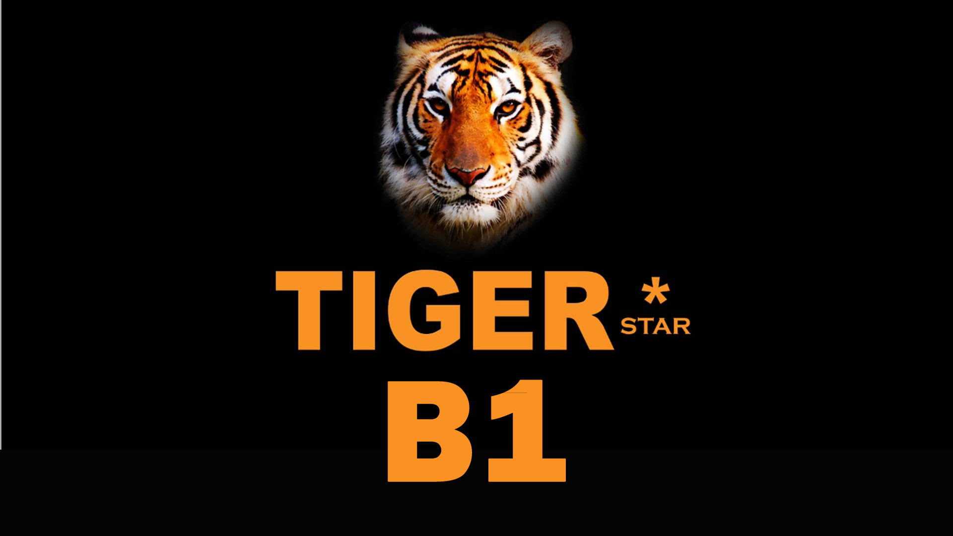 Software Tiger Star B1 HD New Update Firmware Receiver