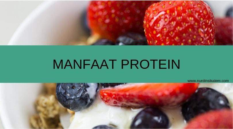 apa saja manfaat protein