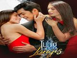 Tubig at Langis May 16, 2016