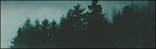 http://feellikeprey.blogspot.com/