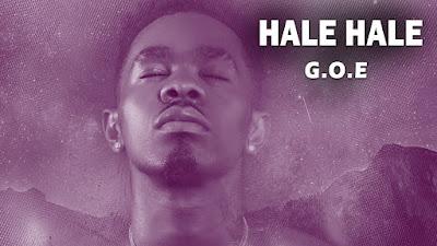 Patoranking - Hale Hale