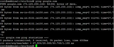 Cara Setting Forward DNS Debian 9 Dengan Bind9 4