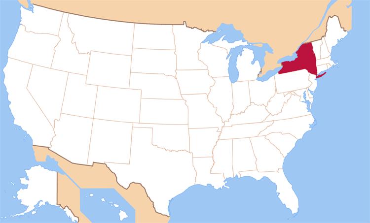 state new-york