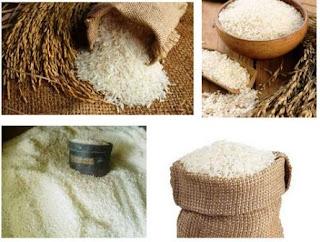 penggilingan / selep padi - tempat kulakan beras murah kwintalan