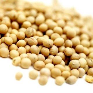 manfaat dan khasiat kacang kedelai