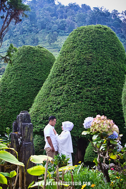 Prewedding di Bukit Jamur Rancabolang Ciwidey Bandung
