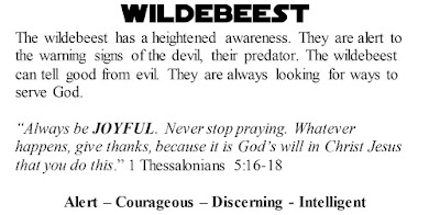 1 Thessalonians 5:16-18 Wildebeest