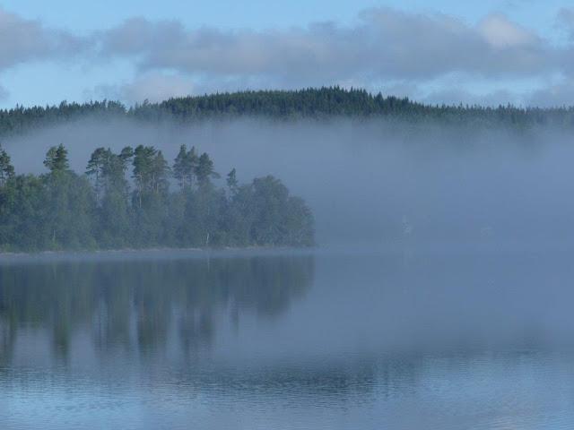 Schweden Campingtrip Urlaub mit Hund Rundreise Roadtrip Sommer Hindas Nebel