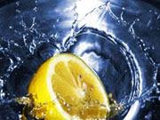 LemonGrass Oils India