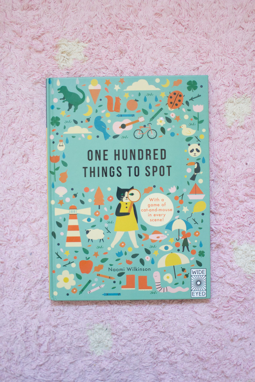 100 Things to Spot Book