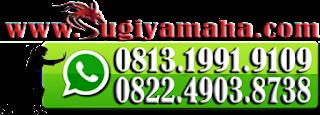 Harga Motor Yamaha, Kredi Motor Yamaha, Promo Yamaha, Price List Yamaha, Dealer Resmi Yamaha, Yamaha Motor