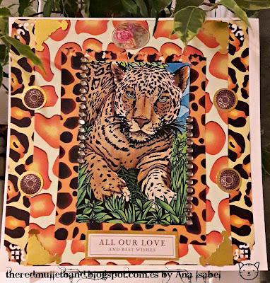 Morgans Fitzsimons Jaguar 14
