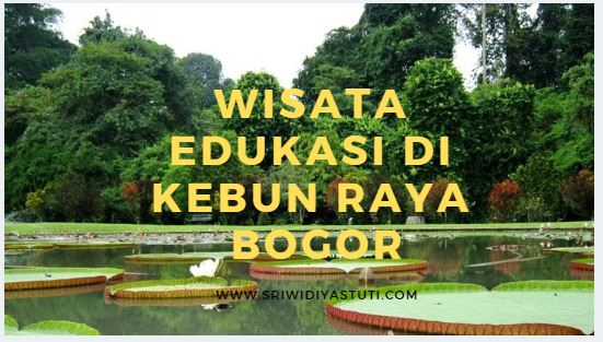 +16 Gambar Wisata Kebun Raya Bogor