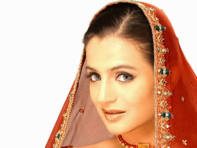 Amisha Patel Wallpapers Free Download