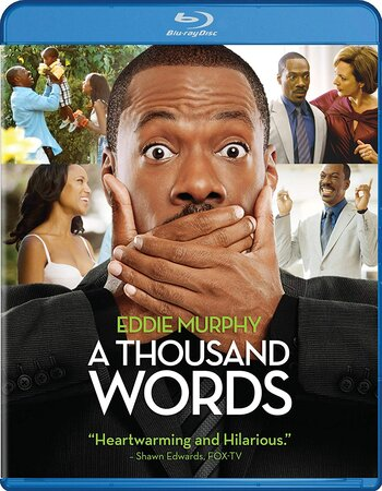 A Thousand Words (2012) Dual Audio Hindi 720p BluRay 800MB ESubs Movie Download
