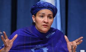 Minister Of Environment, Nigeria