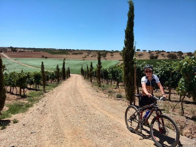passeio de bicicleta com fazendas de vinho - vinícola