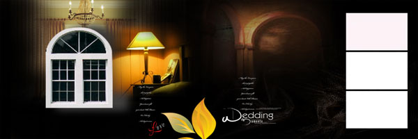 Sanjay Photo World Psd Karizma Wedding Album Designs Vol 09