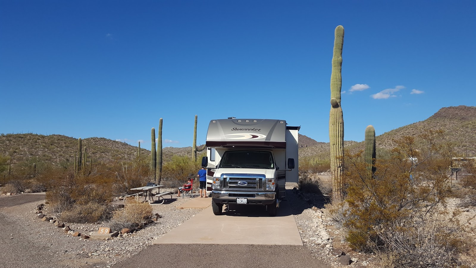 Campgroundcrazy early to mid spring is the best time of year to visit organ pipe cactus national monument because of the blooming desert species publicscrutiny Image collections