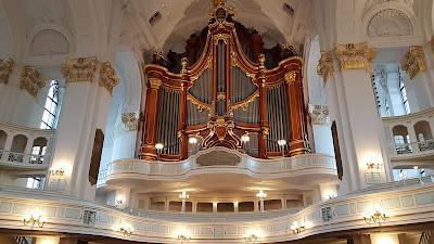 organo gigante