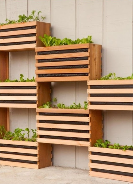 Benefits And Advantages of Vertical Gardens 11