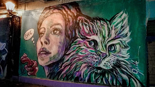 Woman with cat painted at Tuzla wall
