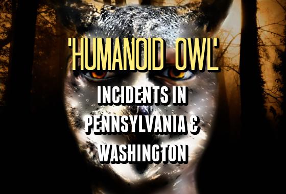 'Humanoid Owl' Incidents in Pennsylvania & Washington